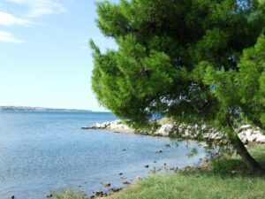 Slowenien Salinen Bucht - Sento Wanderreisen